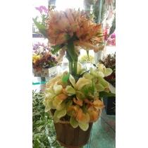 cachepô com alstromélias e orquídeas