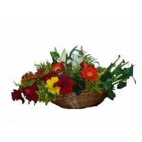 cesta com flores exóticas