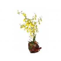 vidro c/ orquídea chuva de ouro