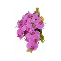 buquê de noiva c/ orquídeas phalaenopsis