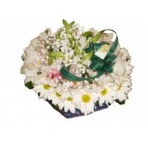 caixa c/ margaridas e orquídeas