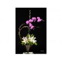 vidro c/ lírios e orquídea