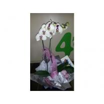 caixa com orquídea e par de chinelos